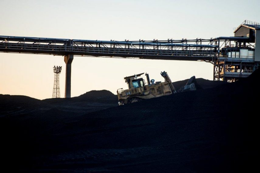 Bumper year for coal exports