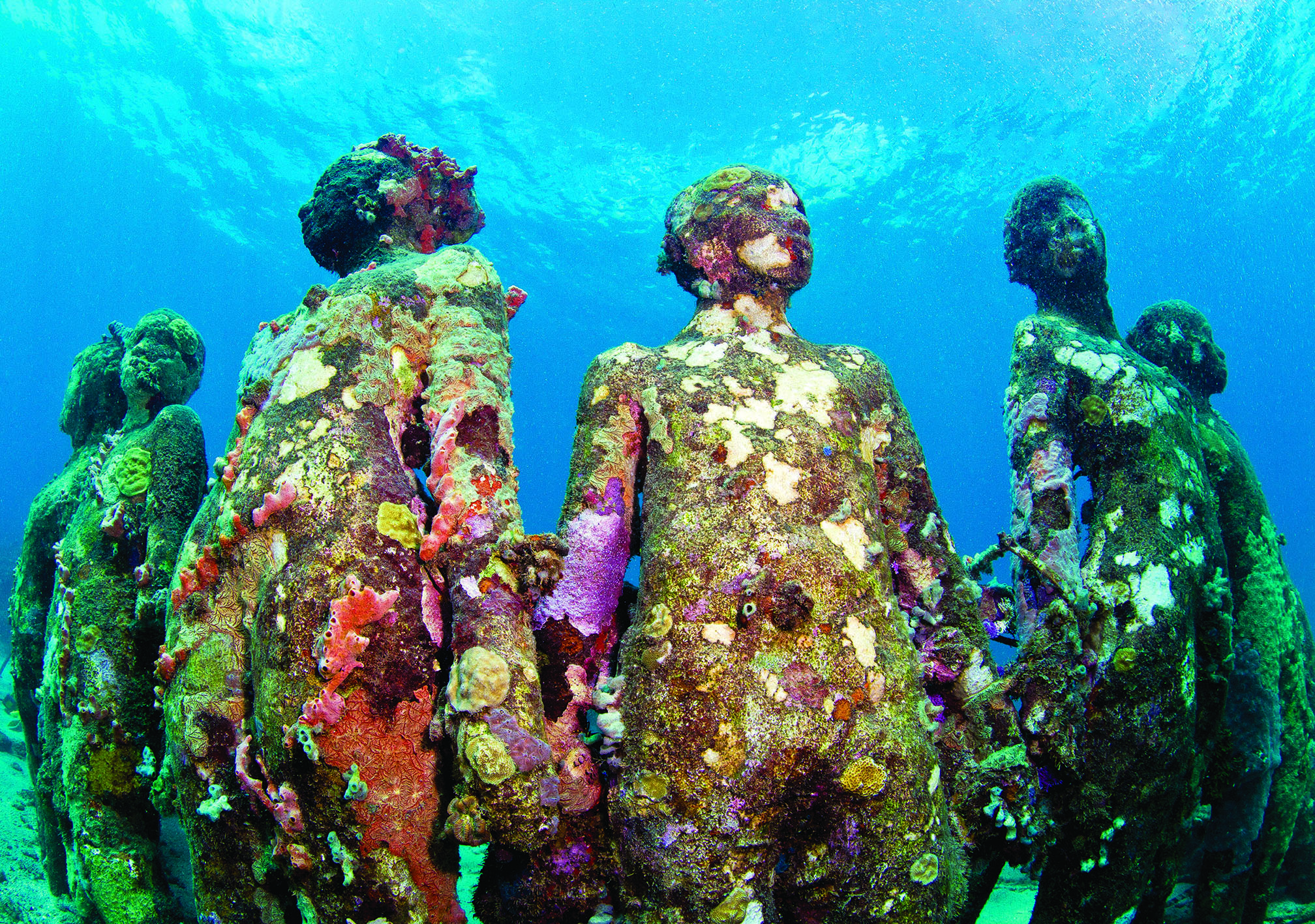 Funding push for underwater art museum